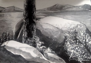 Copics landscape