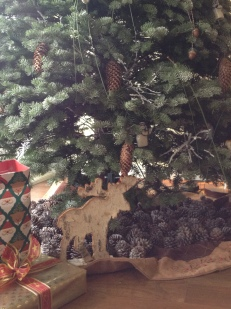 Pine cones galore!