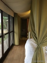 secondary color on curtains and bed drapes