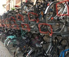 Bicycles parked everywhere